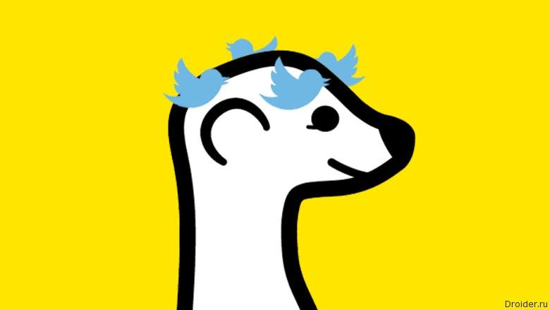 Twitter vs. Meerkat