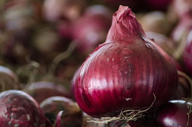 Создатели Tor Browser выпустили мессенджер