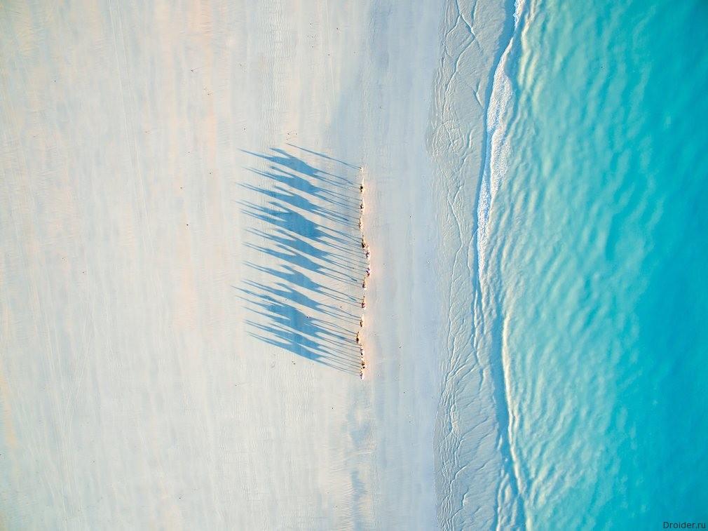 """Вереница верблюдов на пляже Кэйбл-бич, Западная Австралия. Второе место в категории """"Путешествия"""". Фотограф: Todd Kennedy"""