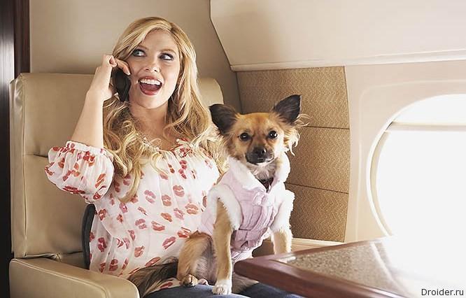 «Аэрофлот» разрешила использовать смартфоны на борту