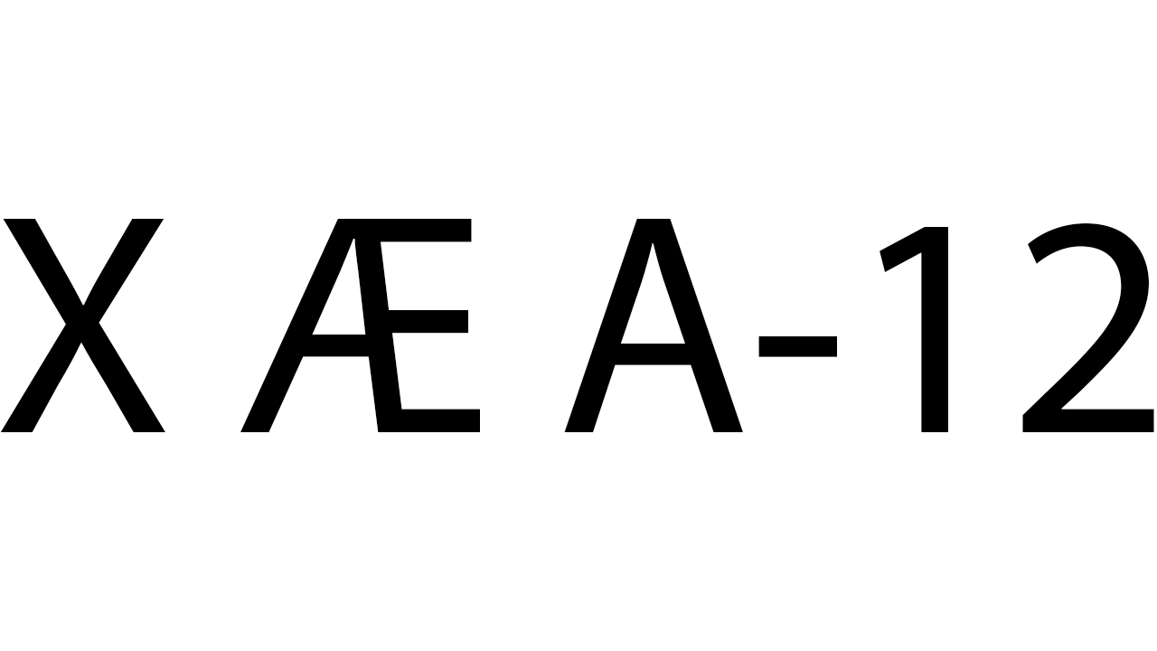 X Æ A-12 Musk или просто Саша: Илон Маск и Граймс стали родителями